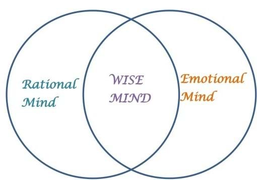 Rational mind, wise mind, emotional mind